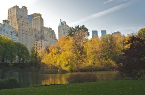 1024px-Central_Park_during_Autumn,_NYC